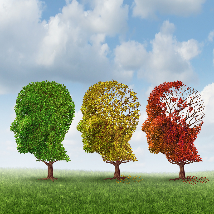 Home Care Services in Plainsboro NJ: 3 Ways the Brain Changes with Alzheimer's