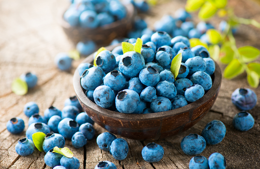 Elderly Care in Lawrenceville NJ: How Seniors Can Celebrate National Blueberry Month