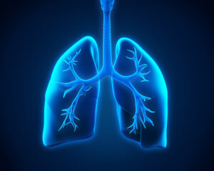 Senior Care in Cranford NJ: September is National Pulmonary Fibrosis Awareness Month - What Do You Know About This Disease?