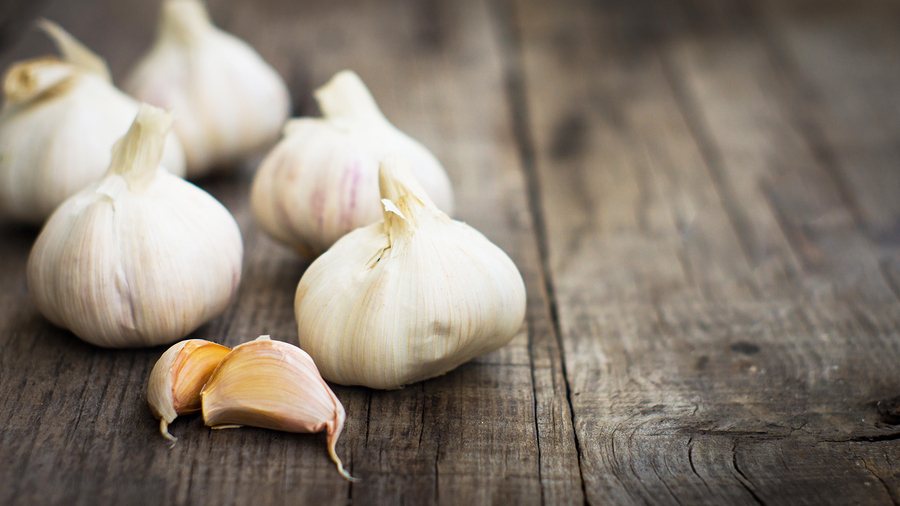 Homecare in Monroe NJ: Do Onions and Garlic Prevent Cancer?